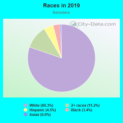 Races in Belvedere in Norfolk neighborhood in VA