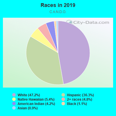 Races in C.A.N.D.O. in Mesa neighborhood in AZ