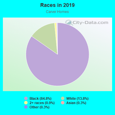 Races in Carver Homes in Atlanta neighborhood in GA