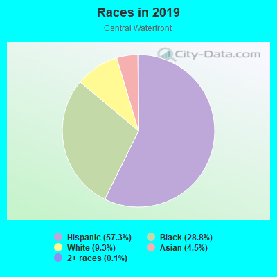 Races in Central Waterfront in Camden neighborhood in NJ