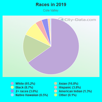 Races in Cole Valley in San Francisco neighborhood in CA