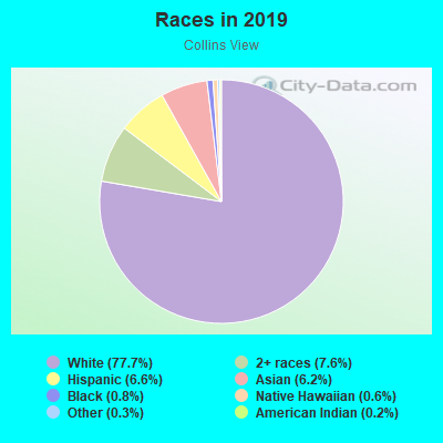 Races in Collins View in Portland neighborhood in OR