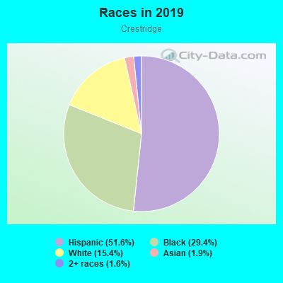 Races in Crestridge in Tampa neighborhood in FL