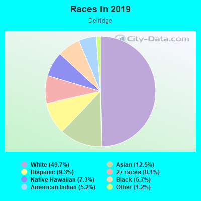 Races in Delridge in Seattle neighborhood in WA