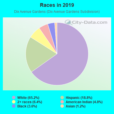 Races in Dix Avenue Gardens in Lincoln Park neighborhood in MI