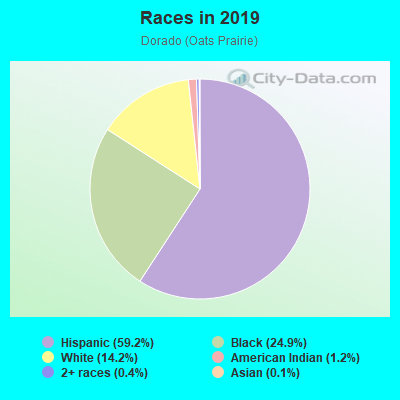 Races in Dorado in Houston neighborhood in TX