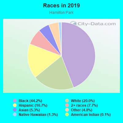 Races in Hamilton Park in Dallas neighborhood in TX