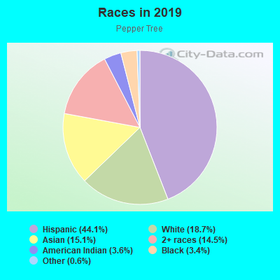 Races in Pepper Tree in San Jose neighborhood in CA