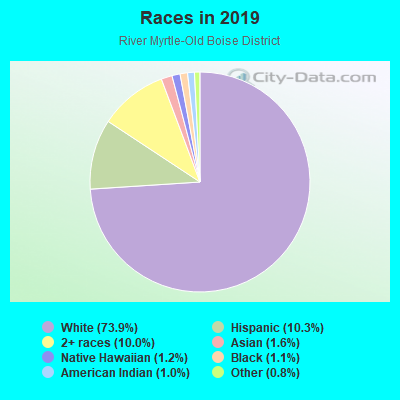 Races in River Myrtle-Old Boise District in Boise neighborhood in ID