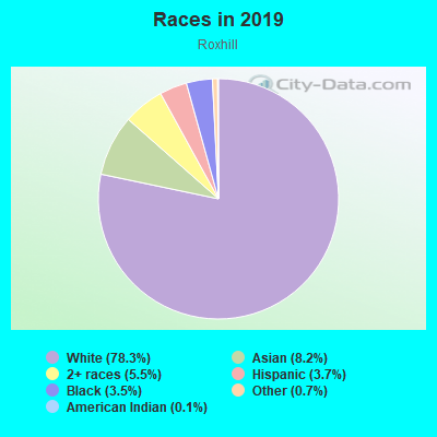 Races in Roxhill in Seattle neighborhood in WA