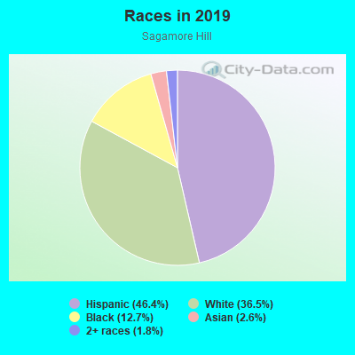 Races in Sagamore Hill in Lynn neighborhood in MA