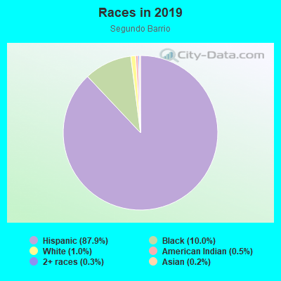 Races in Segundo Barrio in El Paso neighborhood in TX