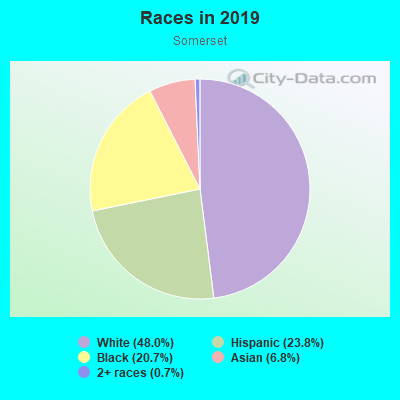 Races in Somerset in Des Moines neighborhood in IA