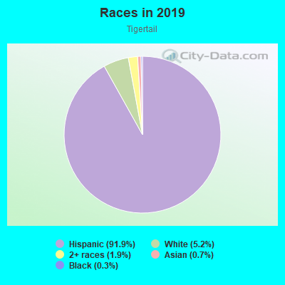 Races in Tigertail in Miami neighborhood in FL