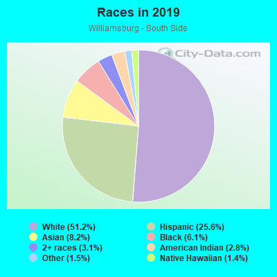 Races in Williamsburg - South Side in Brooklyn neighborhood in NY