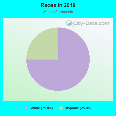 Races in Winkler/Summerlin in Fort Myers neighborhood in FL