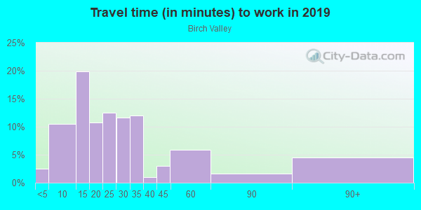 Commute time to work in Birch Valley in Levittown neighborhood in PA