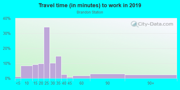 Commute time to work in Brandon Station in Raleigh neighborhood in NC
