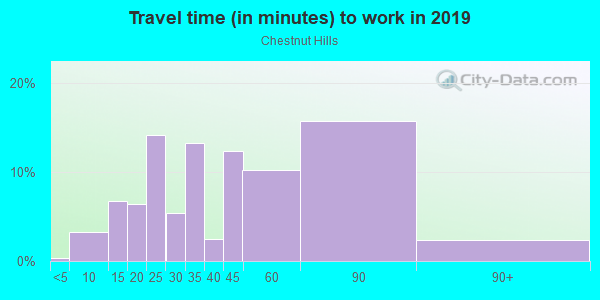 Commute time to work in Chestnut Hills in Silver Spring neighborhood in MD