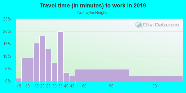 Commute time to work in Grauwyler Heights in Irving neighborhood in TX