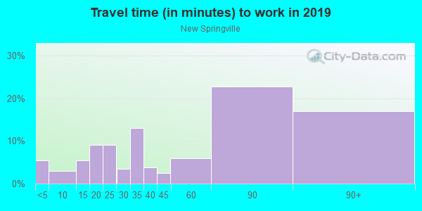 Commute time to work in New Springville in Staten Island neighborhood in NY