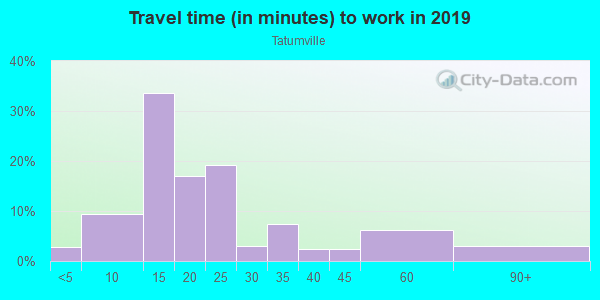 Commute time to work in Tatumville in Savannah neighborhood in GA