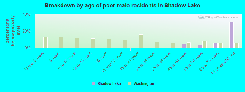 Breakdown by age of poor male residents in Shadow Lake