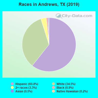 Races in Andrews, TX (2010)