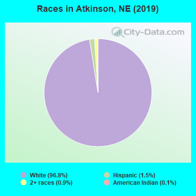 Races in Atkinson, NE (2010)