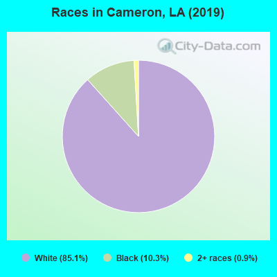 Races in Cameron, LA (2010)