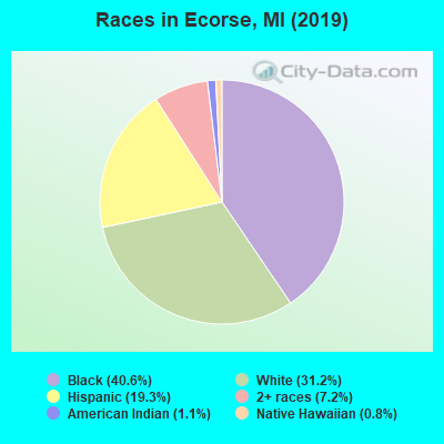 Races in Ecorse, MI (2019)