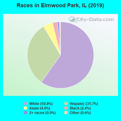 Races in Elmwood Park, IL (2017)