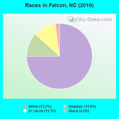 Races in Falcon, NC (2010)