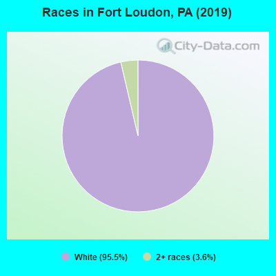 Races in Fort Loudon, PA (2010)