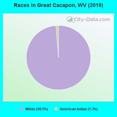 Races in Great Cacapon, WV (2010)
