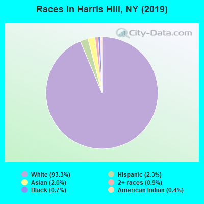 Races in Harris Hill, NY (2010)