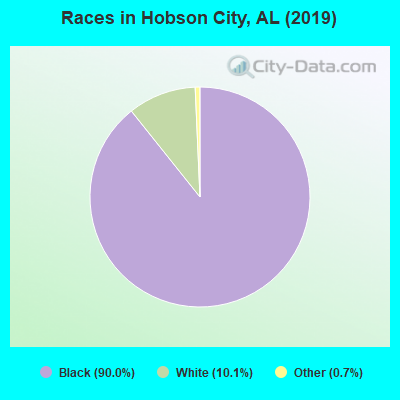 Races in Hobson City, AL (2010)