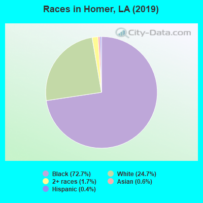 Races in Homer, LA (2010)