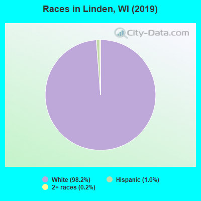 Races in Linden, WI (2010)