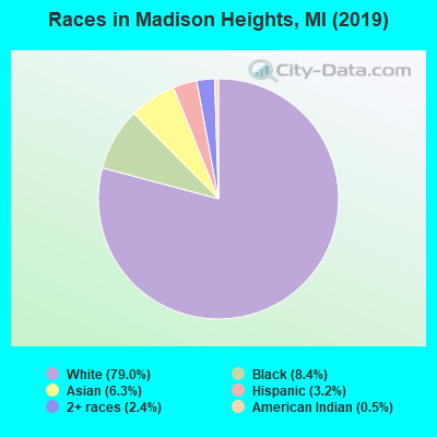 Races in Madison Heights, MI (2016)