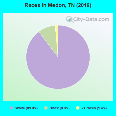Races in Medon, TN (2010)