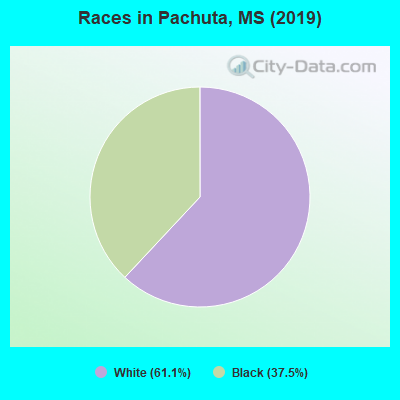 Races in Pachuta, MS (2010)