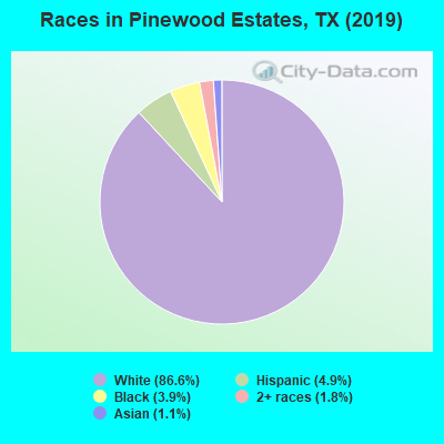 Races in Pinewood Estates, TX (2010)
