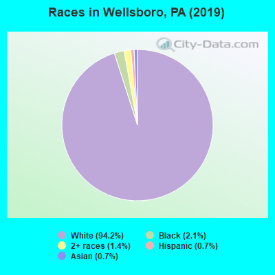 Races in Wellsboro, PA (2010)