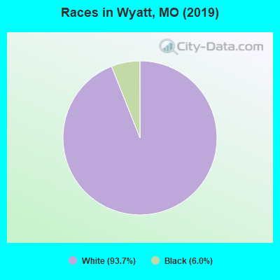 Races in Wyatt, MO (2010)