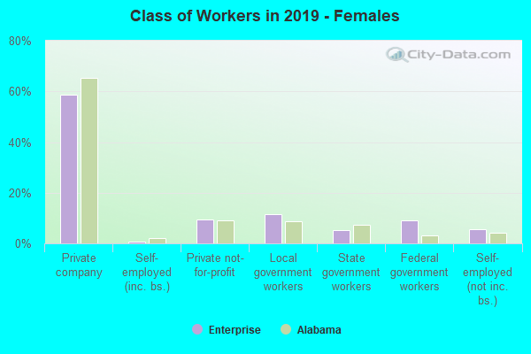 Class of Workers in 2019 - Females
