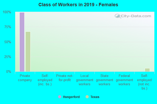 Class of Workers in 2017 - Females