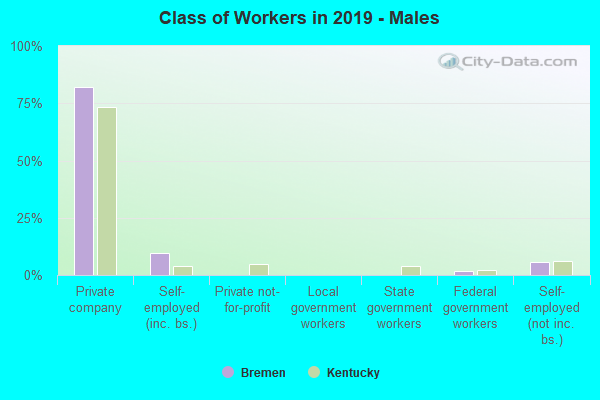 Class of Workers in 2017 - Males