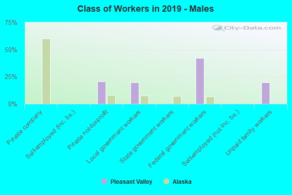 Class of Workers - Males