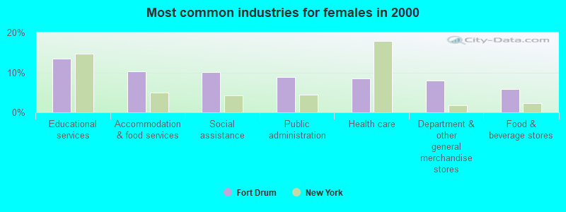 Fort Drum, New York (NY 13602) profile: population, maps